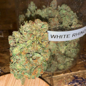 Photo for classified ad Top shelf grade AA indoor greenhouse strains at affordable prices