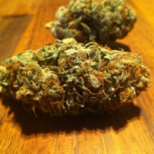 Photo for classified ad TOP SHELF MMJ STRAINS, HASH, WAX, SHATTER, PILLS FOR HOOKUP
